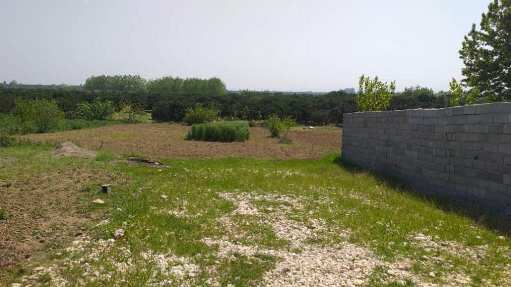 فروش زمین ۹۰۰ متری جاده دریا ماهفروز محله