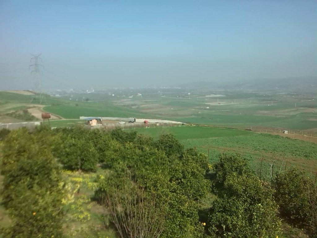 فروش باغ مرکبات ۴۸۰۰ متری جاده نکا بادله روستا لالیم