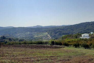 فروش زمین بالا تپه ۴/۷۰۰ متر بین زرین آباد و اسبوکلا